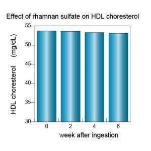 anticholesterol-hdl%e3%82%b3%e3%83%ac%e3%82%b9%e3%83%86%e3%83%ad%e3%83%bc%e3%83%ab%e8%8b%b1%e8%aa%9e3