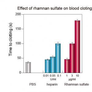 antibloodclotting_%e8%a1%80%e6%b6%b2%e5%87%9d%e5%9b%ba%e8%8b%b1%e8%aa%9e