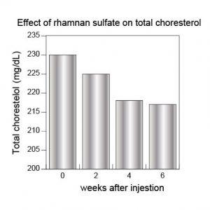 anticholesterol-%e7%b7%8f%e3%82%b3%e3%83%ac%e3%82%b9%e3%83%86%e3%83%ad%e3%83%bc%e3%83%ab%e8%8b%b1%e8%aa%9e1