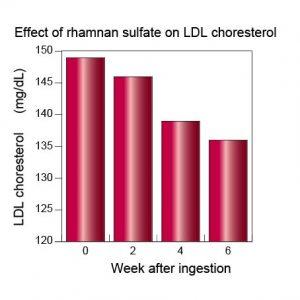 anticholesterol-ldl%e3%82%b3%e3%83%ac%e3%82%b9%e3%83%86%e3%83%ad%e3%83%bc%e3%83%ab%e8%8b%b1%e8%aa%9e2